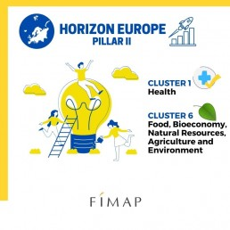 HORIZON EUROPE CLUSTER 1 HEALTH CLUSTER 6 Food, Bioeconomy, Natural Resources, Agriculture and Environment
